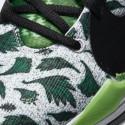 "Nike Zoom Freak 2 ""Naija"" Basketball Shoes"