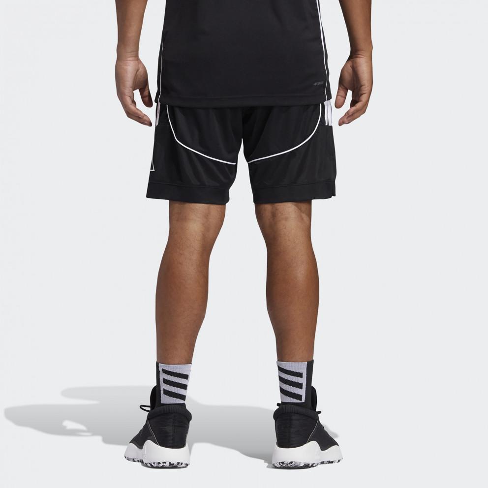 adidas Performance Creator 365 Ανδρικά Σορτς για Μπασκετ